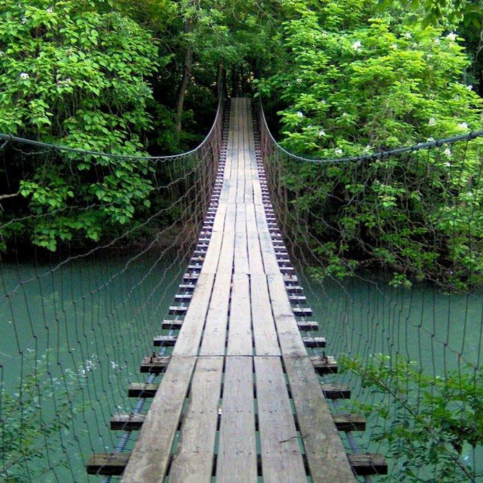 life-success-coach-bridge-over-river
